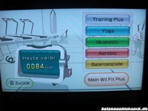 Wii Fit Hauptmenü