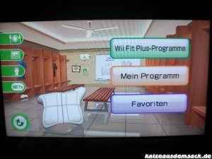Mein Wii Fit Plus