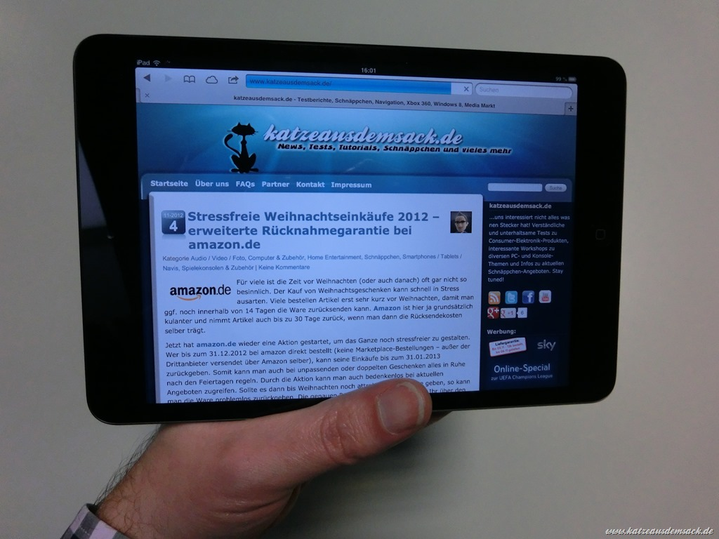 ipad-mini-browser-katzeausdemsack.jpg