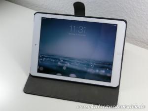 iPad Air Hülle / Cover günstig